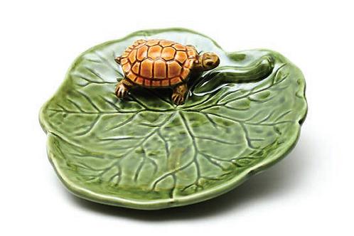 Coupelle tortue - QuaiTejo