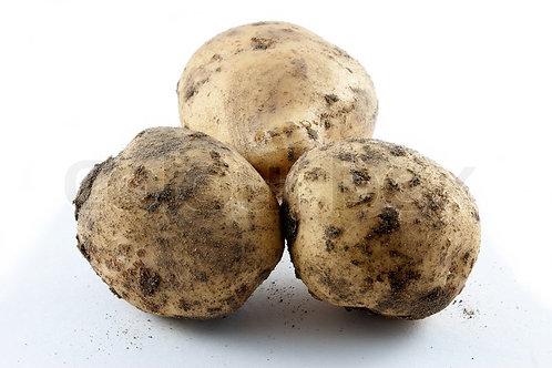 New Potatoes - Boston's