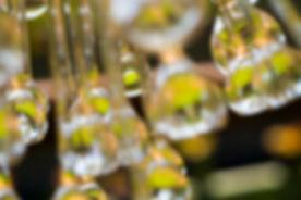 Abstract Lights01.jpg