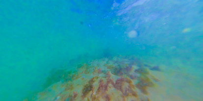 Main Pic Spit Underwater.jpg