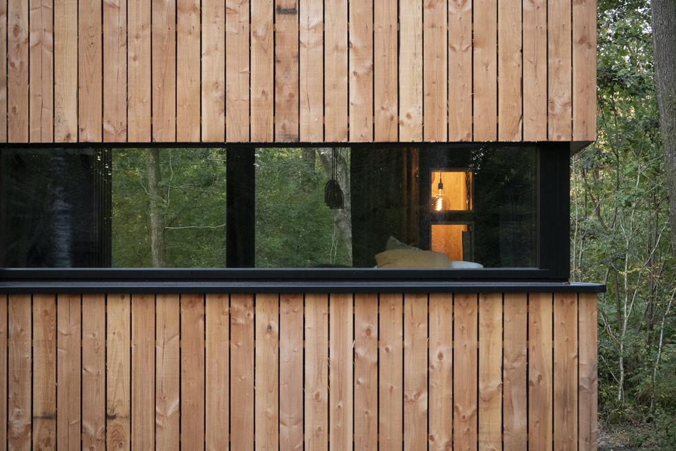 Forest Cube Galerie_25 .jpg