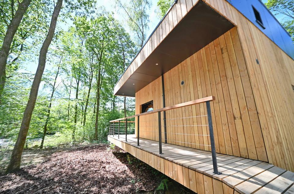 Forest Cube Galerie_18 .JPG