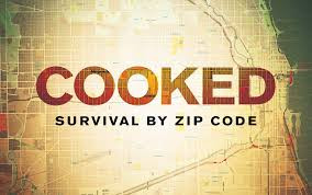 Cooked: Survival by Zip Code poster