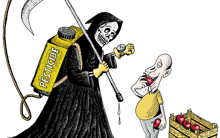 Grim Reaper with pesticides watches a man eat a sprayed apple