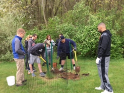 2016 Arbor Day Tree Planting
