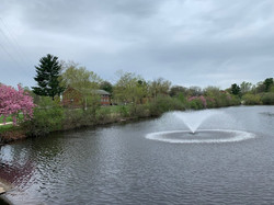 Fountains on Centennial Lake