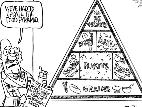 What are microplastics? And how they end up on your plate?