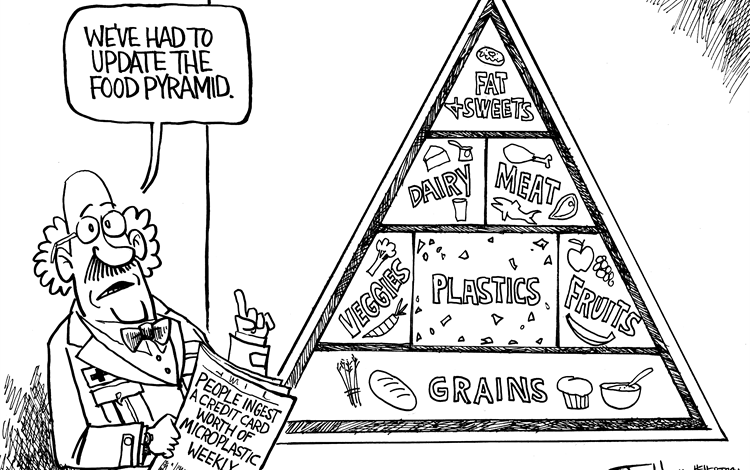New and Improved Food Pyramid with plastics added between fruits and vegetables