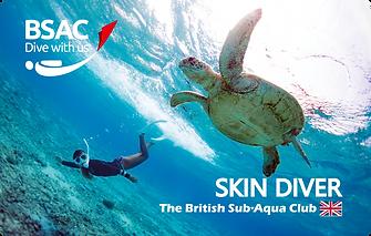 skin_diver.png