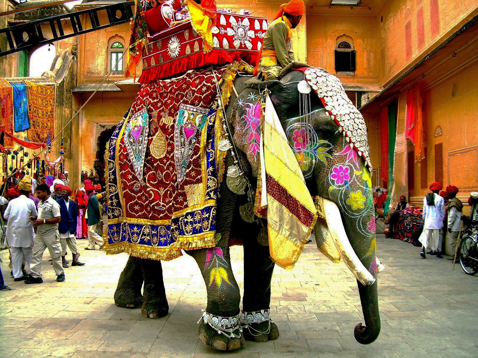 Decorated elephant.jpg