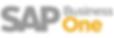 logo_sap_bo.png