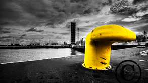 Zeebrugge Yellow Spot