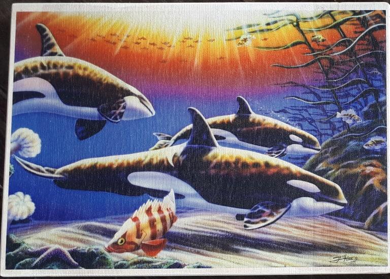 Orca Print