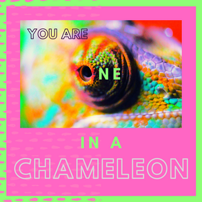 Insta_You are one in a Chameleon.png