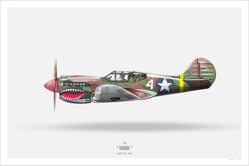Warbird P-40 Warhawk Illustration Art Print