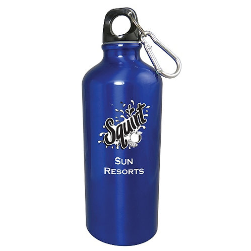 20oz Aluminum Sports Bottle w/Carabiner