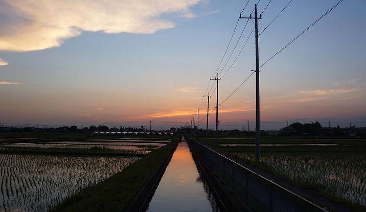 越谷市田園風景