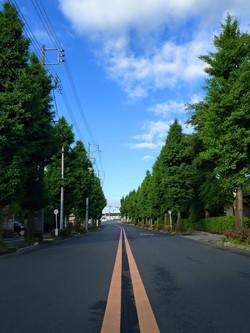 越谷青葉通り_59.jpg