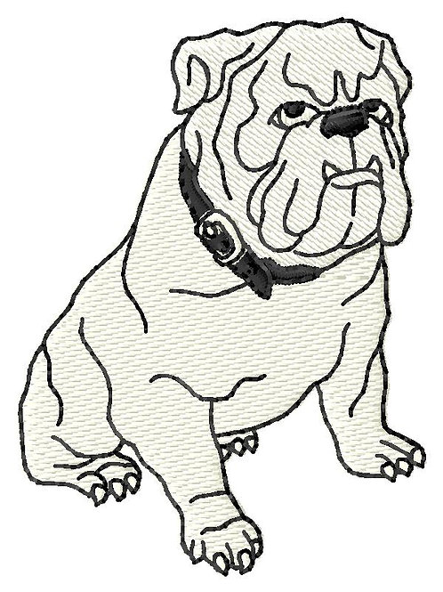 Bulldog #175