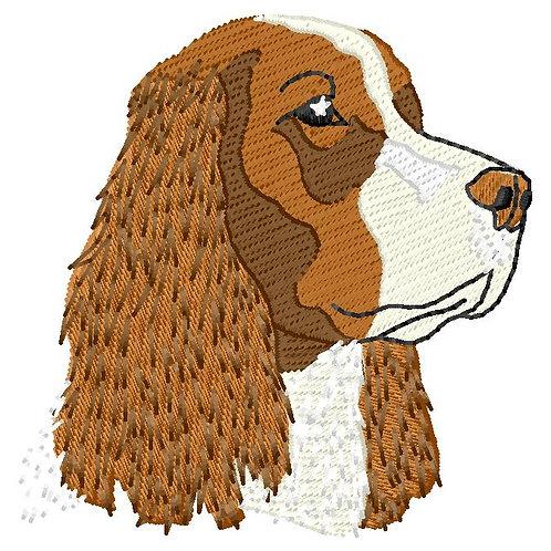 Dog #39