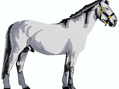 Grey Horse #224