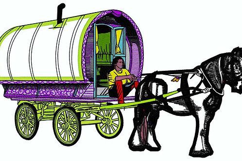 Gypsy Bow Top #223