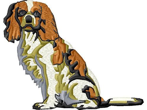 Dog #191