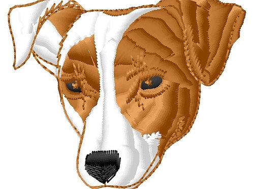 Terrier #29
