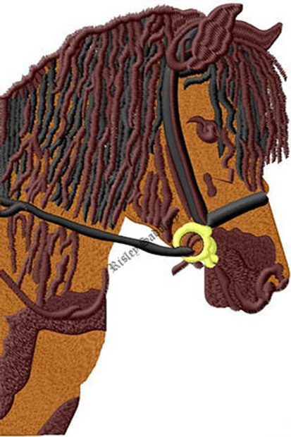 Horse Head #220