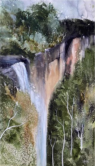 """""""Fitzroy Falls"""" by Kathy Karas"""