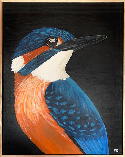 Curious Kingfisher