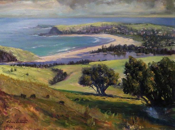 """Mount Pleasant Lookout on Werri Beach"" by Salwa Woodroffe"