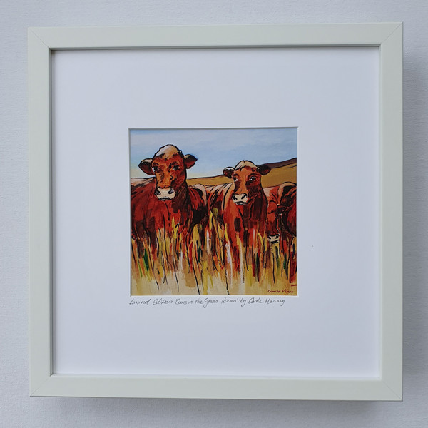 Cows in the Grass