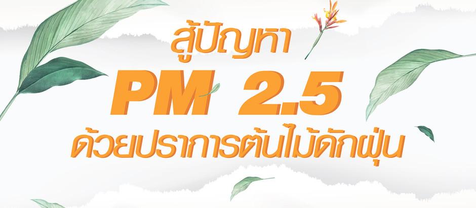 สู้ปัญหา PM 2.5 ด้วยปราการต้นไม้ดักฝุ่น