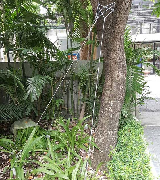 KEMREX Tree Support 9