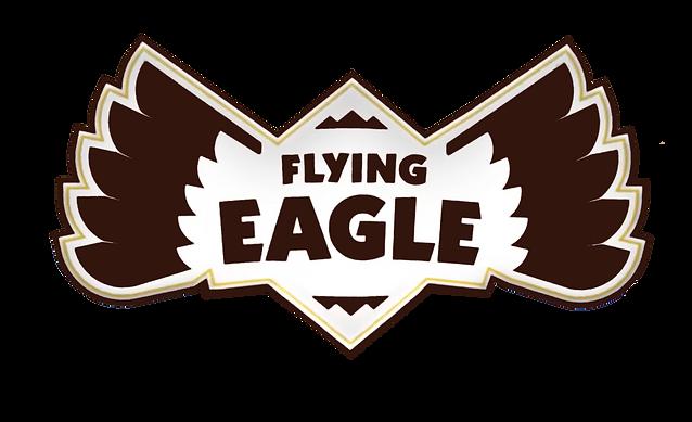 flying eagle logo.png