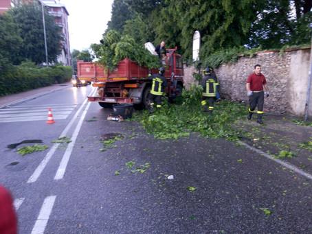 Rimozione alberi caduti e pericolanti Monza e Brianza