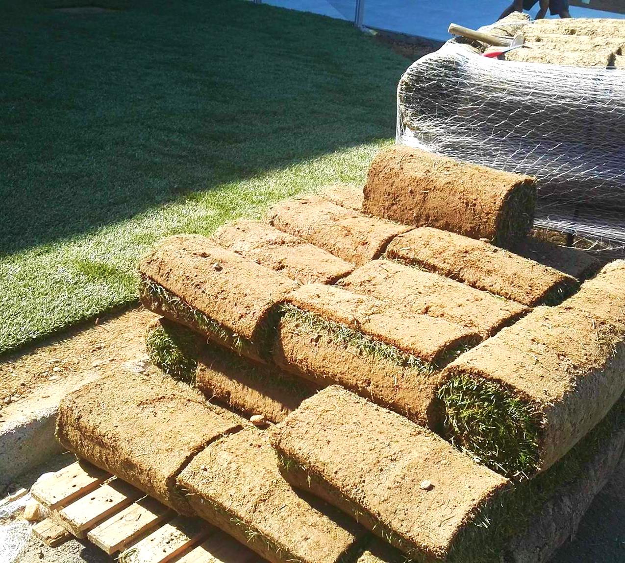 impiantare l'erba naturale