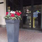 spazi verdi per negozi Lissone - Monza - Vedano - Brianza