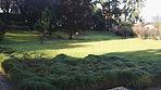 Manutenzione Giardini Vedano al Lambro