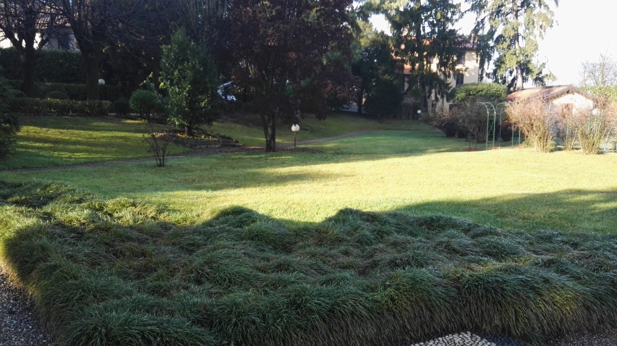 giardinaggio Lissone