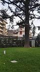 Potatura alberi Monza