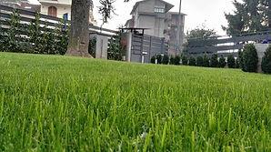 Realizzazione Giardini Condominiali Lissone