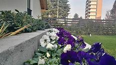 Floricoltura Vedano al Lambro