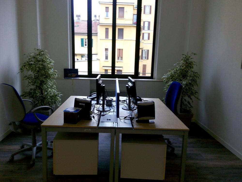 Ficus per ufficio Monza e Brianza