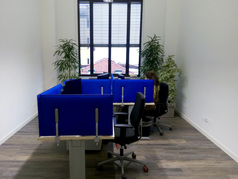 Piante per ufficio Monza