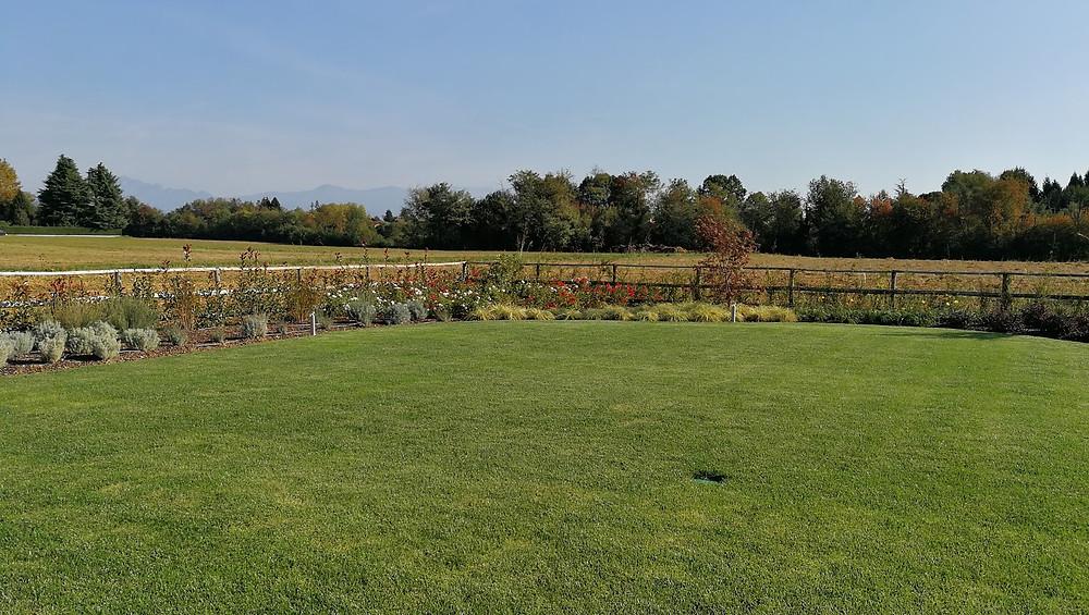 monza manutenzione giardini