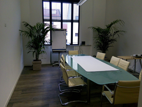Piante per Uffici e Appartamenti Monza