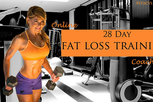 28 Day Fat Loss Training / Workout Plans