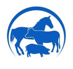Логотип_сай1т.jpg